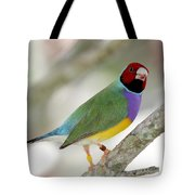 Full Of Color Tote Bag