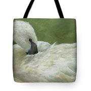 Full Of Grace Tote Bag