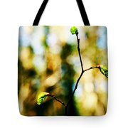 Full Of Life 6 Tote Bag by Yevgeni Kacnelson