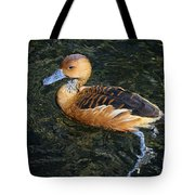Fulvous Whistling Duck Tote Bag