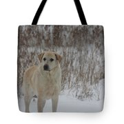 Fun In The Snow Tote Bag