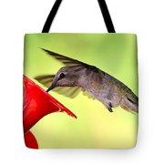 Fun Summer Hummingbird Tote Bag