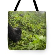 Fun Times In The Rainforest Tote Bag
