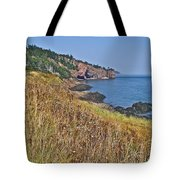Fundy Bay Coastline Near Cliffs Of Cape D'or-ns Tote Bag