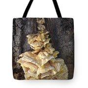Fungi On Oak Tote Bag