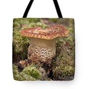Fungi Wearing Lace Tote Bag