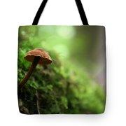 Fungus 4 Tote Bag