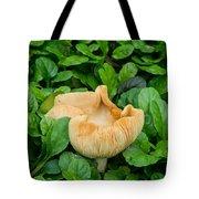 Fungus Among The Ajuga Tote Bag