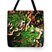 Fungus Among Us Tote Bag