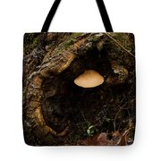 Fungus In A Knothole Tote Bag