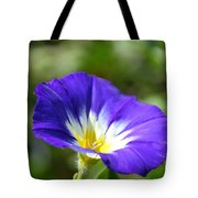 Funneling Sunshine Tote Bag