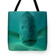 Funny Fish Face Tote Bag