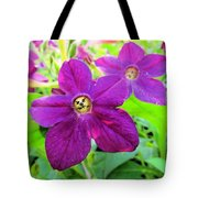 Funny Flower Faces Tote Bag
