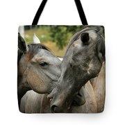 Funny Horses Tote Bag