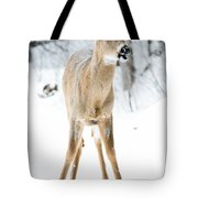 Funny Stance Tote Bag