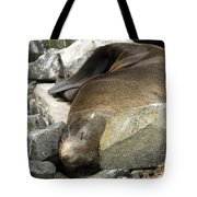 Fur Seal Tote Bag