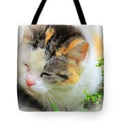 Furry Ball Tote Bag