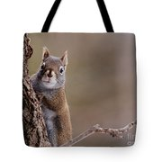 Furry Ears Tote Bag