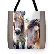 We Were The Most Furry Friends Tote Bag