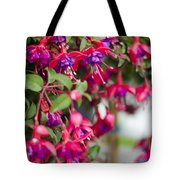 Fuchsia Spilling Over  Tote Bag