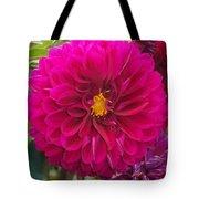 Fushia Tote Bag