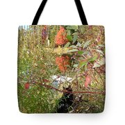 Fuzzy And The Reflected Tree Tote Bag