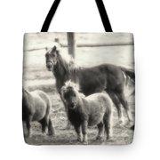 Fuzzy Ponies Tote Bag