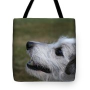 Fuzzy Whiskers Tote Bag