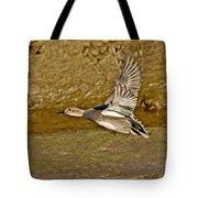 Gadwall Drake In Flight Tote Bag