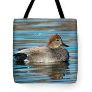 Gadwall Duck Drake Swimming Tote Bag