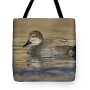 Gadwall On Icy Pond Tote Bag
