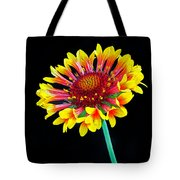 Gaillardia Arizona Sun Tote Bag