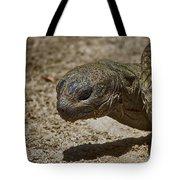 Galapagos Giant Tortoise Tote Bag