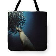 Galapagos Sea Lion Pup Fishing Tote Bag