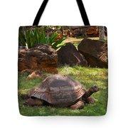 Galapagos Turtle At Honolulu Zoo Tote Bag
