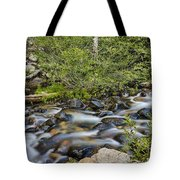 Galena Creek Tote Bag
