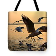 Ganges River Gulls Tote Bag