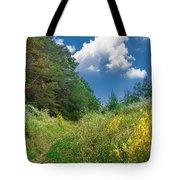 Gap Trail Tote Bag