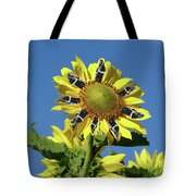 Garciacat Sunflower Tote Bag