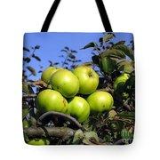 Garden Bounty Tote Bag