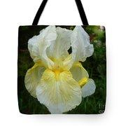Garden Fairy Of Sunset Tote Bag