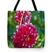Garden Flowers Red Pink Getty Center   Tote Bag