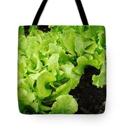 Garden Fresh Baby Lettuce And Lady Bug Tote Bag