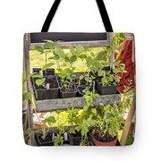 Garden Herb Nursery Tote Bag