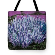 Garden Path Tote Bag
