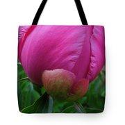 Garden Peony June Joy  Tote Bag