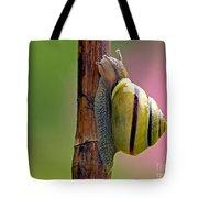 Garden Snail Bright Tote Bag