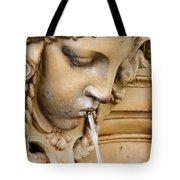 Garden Statue Of Tethys Tote Bag