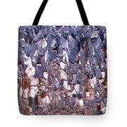 Garden Stone Wall  Tote Bag