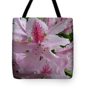 Garden Sunshine Tote Bag